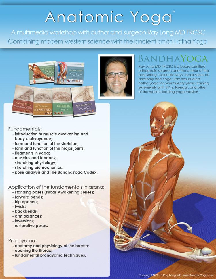 Perfecto Yoga Anatomy And Physiology Adorno - Imágenes de Anatomía ...